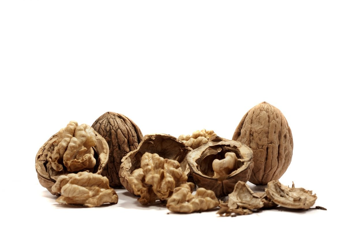 close view detail of  some walnuts  isolated on a white background.